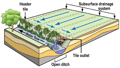 water draining system